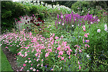 SX9050 : Formal gardens at Coleton Fishacre by Kate Jewell