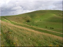 SU0664 : Downland, Bishops Cannings by Andrew Smith
