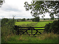 SO7729 : View across a gate by Pauline E