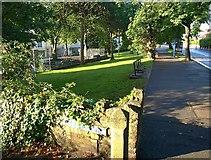 SX9364 : Beside Babbacombe Road, Wellswood by Derek Harper