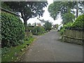 NY4459 : Lane in Crosby-on-Eden by Oliver Dixon