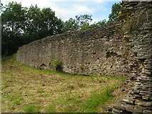 SO3129 : Longtown castle by andy dolman
