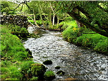 SD9062 : Malham Beck south of the village by Andy Beecroft