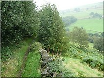 SE0328 : Footpath from Upper Saltonstall to Wade Wood, Warley by Humphrey Bolton
