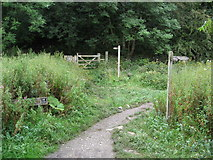 SK1273 : Cheedale - Nature Reserve and Footpath Junction by Alan Heardman