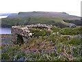SM7309 : Skomer Island Lime Kiln by Anonymous