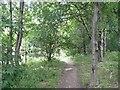 SE1422 : Footpath off Stratton Park, Rastrick by Humphrey Bolton