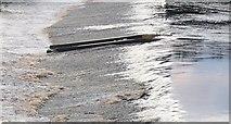 NY9170 : Weir at Chollerford by Nigel Mykura