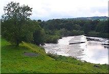 NY9170 : Chollerford Weir by Nigel Mykura