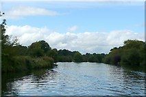 SU9972 : River Thames past Magna Carta Island by Graham Horn