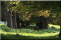 TL7262 : Footpath to Dalham by Bob Jones