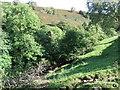 NY8410 : River Belah near Ewbank Scar by David Brown