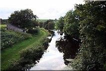 SD5383 : River by John Salmon