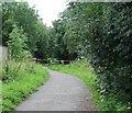 NZ2138 : Railway path by Antonia