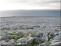 M1410 : Limestone pavement at the northwest Burren tip by C Michael Hogan