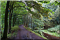 SD6220 : Path along The Goit by Dave Green