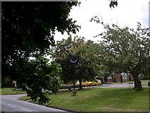 TM0848 : Somersham village sign by trevor willis