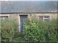 SM8821 : Dunlin, Roch by Deborah Tilley