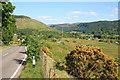 NM8725 : View of Kilmore by George Rankin