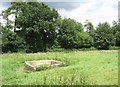 SU6247 : Derelict drinking trough by Sandy B