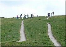 ST6601 : Giant Calf dug up on Steep Hillside in Dorset by Nigel Mykura