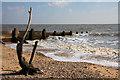 TM2623 : Flotsam on Walton beach by Bob Jones