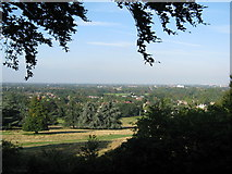 TQ1873 : View from King Henry's Mound-Richmond Park by Alan Swain