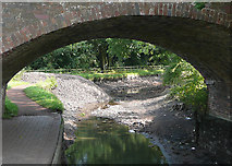 SO8785 : Stourbridge Canal empty at Middle Bridge by Roger  Kidd