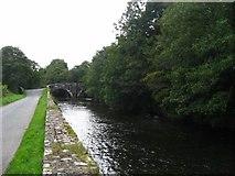 SN0717 : Bridge at Llawhaden by Shaun Butler