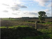 O1165 : Lacystown, Co. Meath by Kieran Campbell