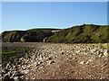 NZ4445 : Hawthorn Beach Showing Viaduct by Irene Marlborough