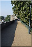 TR1457 : Canterbury City Walls by N Chadwick