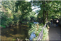 TR1558 : Great Stour, Canterbury by N Chadwick
