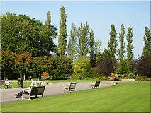 TQ2882 : Queen Mary's Gardens, Regent's Park by Stephen McKay