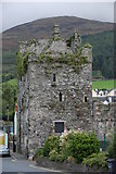 J1811 : Taaffe's Castle Carlingford by Norman McMullan