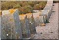 SY5683 : Anti-tank defences Chesil beach by Nigel Mykura