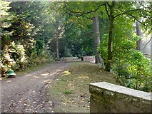 SJ2504 : Track around Offa's Pool by Penny Mayes