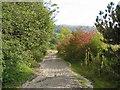 SK2175 : Track downhill to Middleton Dale by Alan Heardman