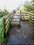 NY6565 : Cycleway bridge over Tipalt Burn by Oliver Dixon