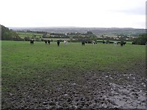 H2195 : Calhame Townland by Kenneth  Allen