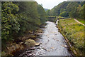 SJ9791 : River Etherow by Phil Champion