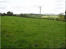 H2798 : Shannon Townland by Kenneth  Allen