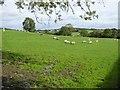 H2699 : Cloghfin Townland by Kenneth  Allen