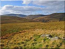NN7613 : Western Slopes of Meall a' Choire Riabhaich by Dr Richard Murray
