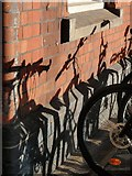 SX9193 : Shadows of bicycles, St David's station, Exeter by Derek Harper