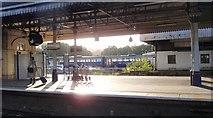 SX9193 : Exeter St David's station by Derek Harper