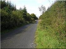 C2406 : Road at Mondooey by Kenneth  Allen